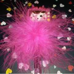 Tickled pink Blog